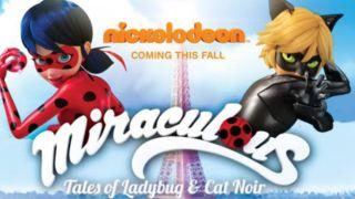 ladybugcatnoir