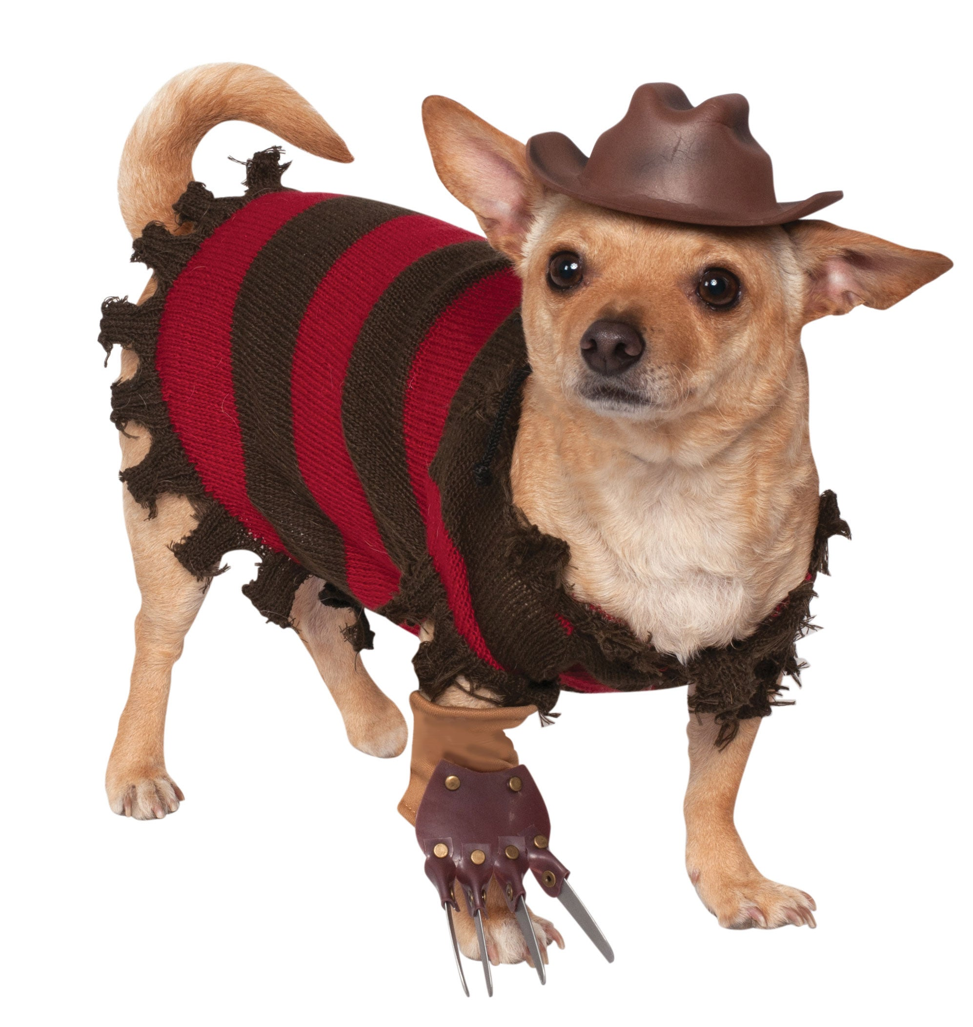 freddy krueger and jason voorhees halloween costumes for dogs revealed