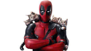 deadpool-caturday-header