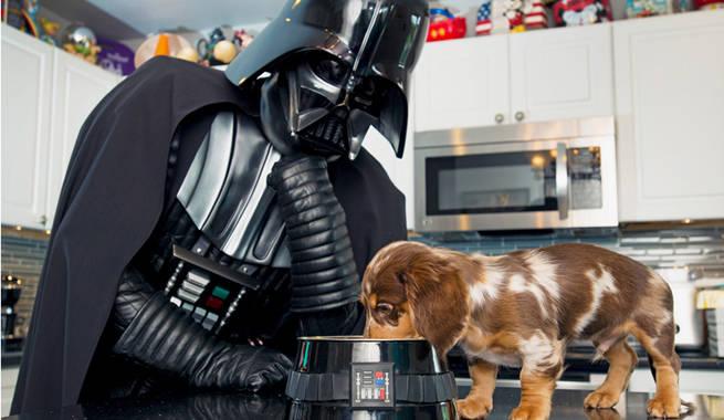 501st-vader-dachshund-header