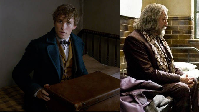 Fantastic Beasts And Where To Find Them May Feature