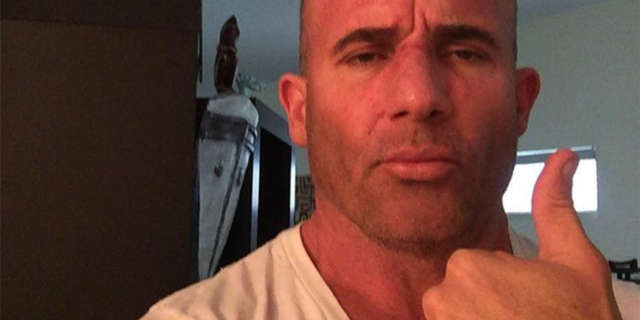 dominic-purcell-healing-prison-break
