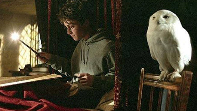 harry potter and the cursed child will no longer use live owls