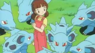 pokemon herd