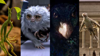 fantasticbeasts-creatures