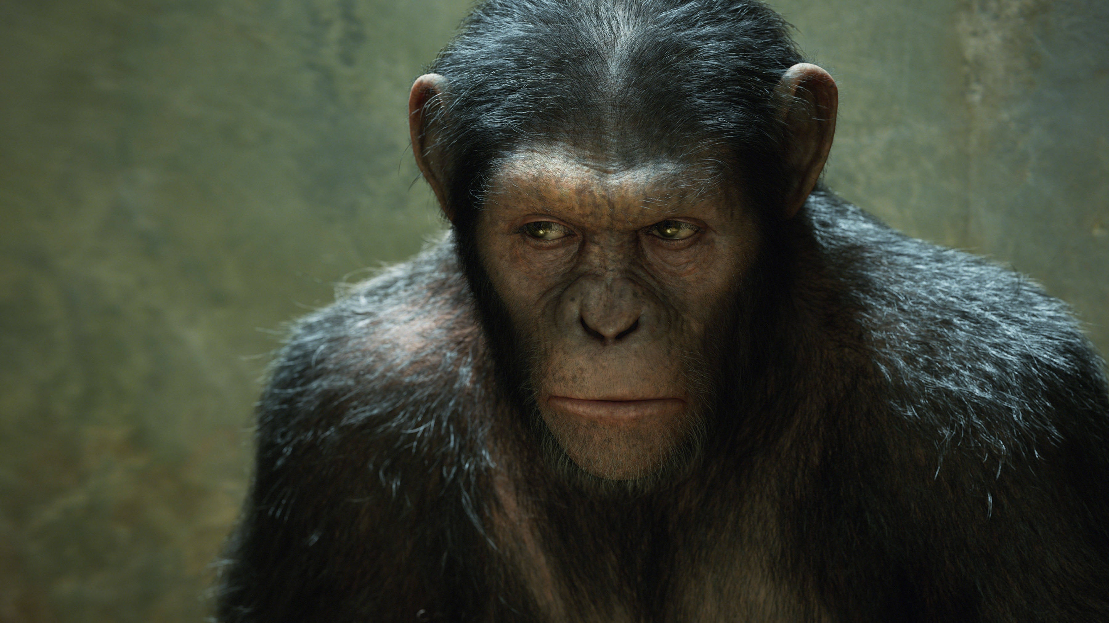 War for the Planet of the Apes Plot Details, First Footage Revealed At NYCC