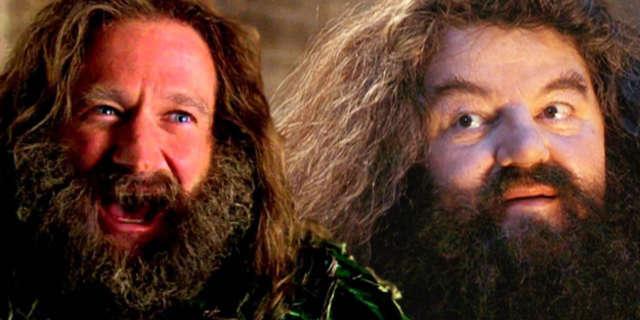 harry-potter-robin-williams