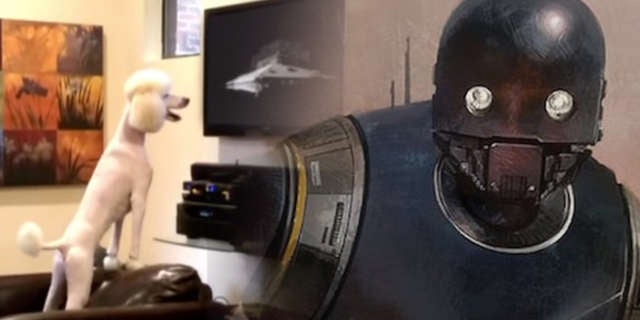 Rogue-One-Star-Wars-Pets