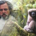 Star-Wars-Gibbons
