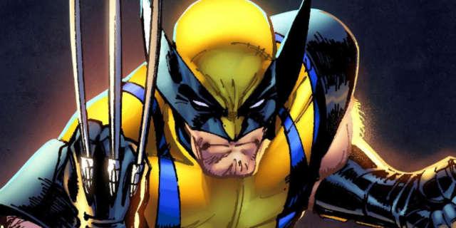 Wolverine 3 Logan Classic Comic Book Costume