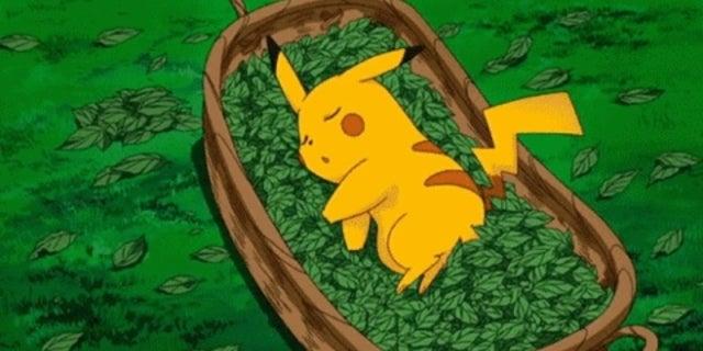 sleeping pikachu
