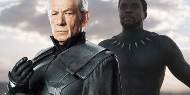 black panther magneto