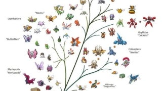 Pokemon Tree of Life
