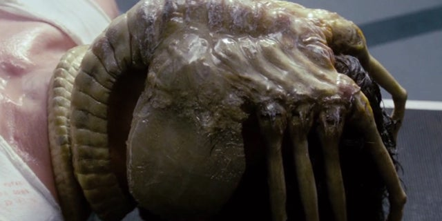 alien movie facehugger xenomorph