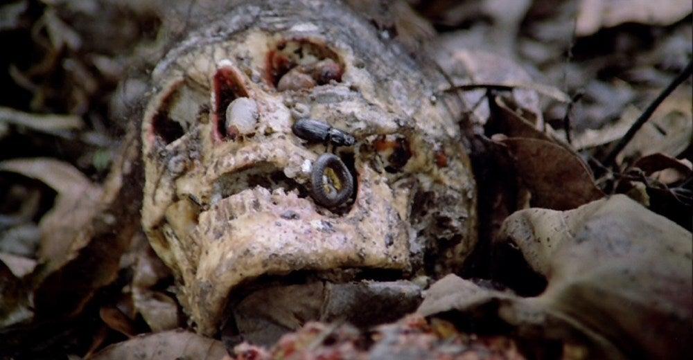 cannibal holocaust movie 1980 skull