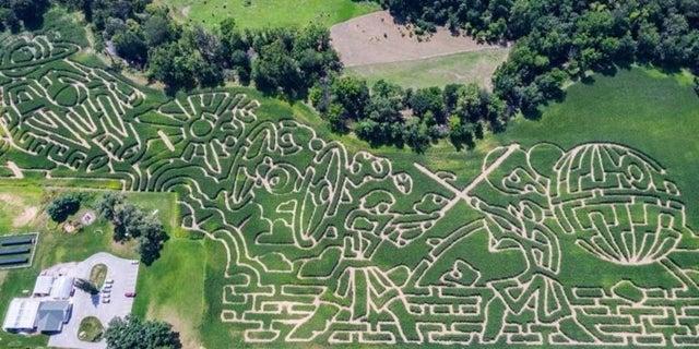 star-wars-corn-maze-large