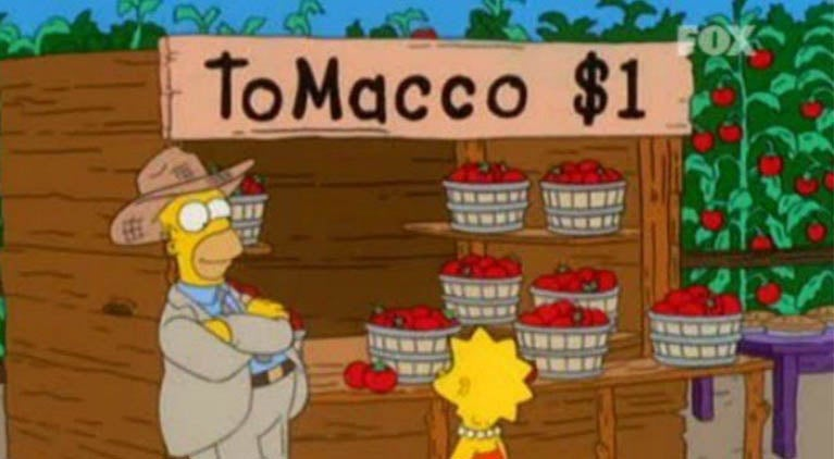 the-simpsons-tomacco-1
