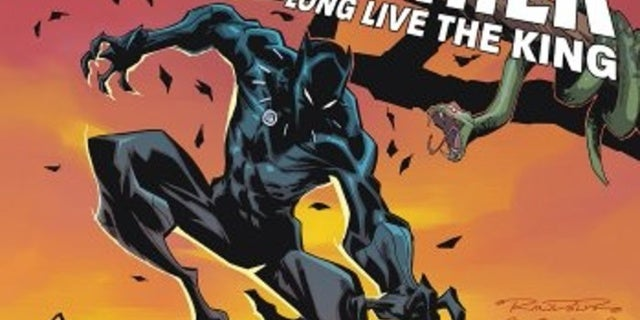 Black Panther Long Live the King