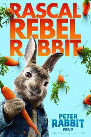Peter Rabbit movie poster image
