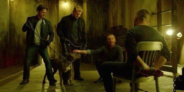 The Punisher dog