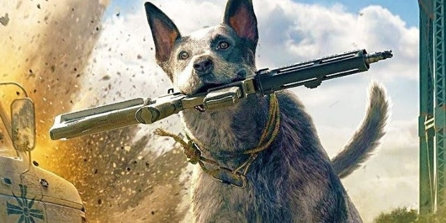 far cry 5 how to remove companion
