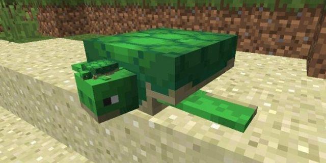 Minecraft Sea Turtle