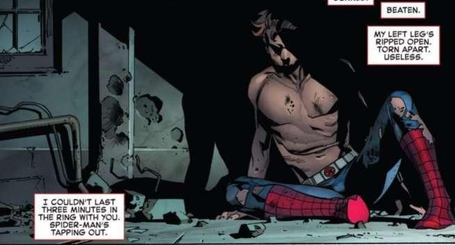 Death Amazing Spider-Man 800 - Peter Parker