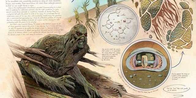 anatomy-of-swamp-thing