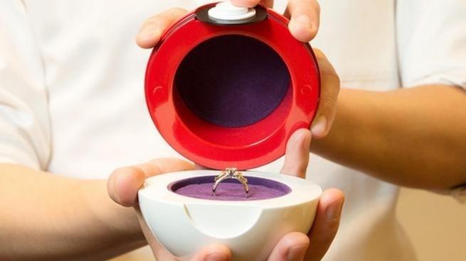 pokemon engagement ring with poke ball case revealed