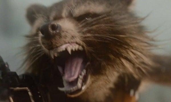 Rocket raccoon and groot drawing