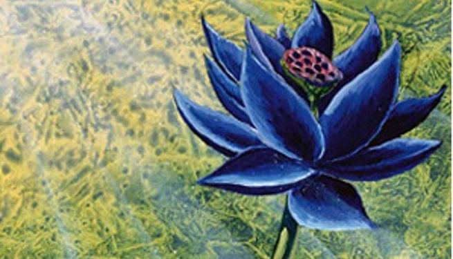 magic the gathering beta black lotus card up for sale. Black Bedroom Furniture Sets. Home Design Ideas