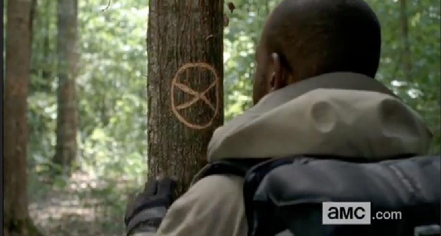 Tree Marking Symbols The Marks on The Trees