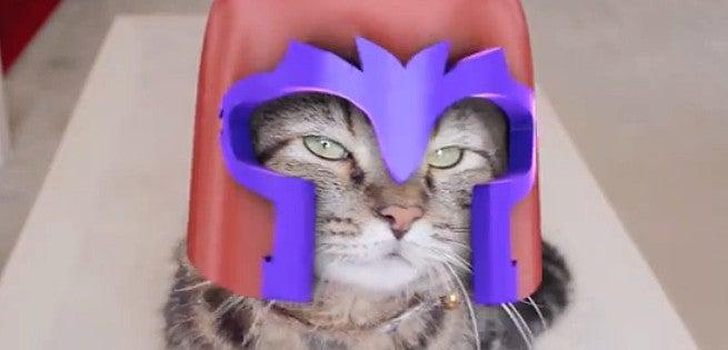 Watch X Men Magneto Cat Fan Made Video Right Meow