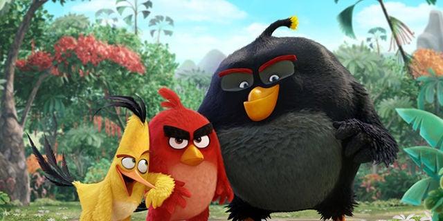 theyrenothappybirds