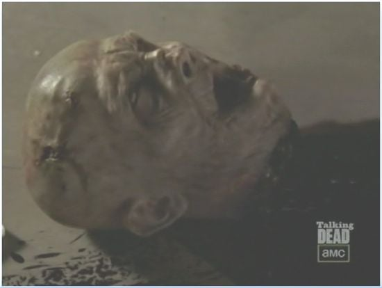 Walking Dead Season 3 Zombie head