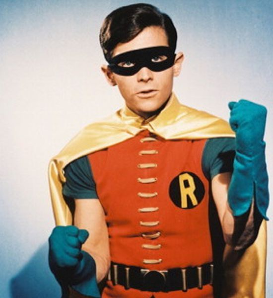 Image result for robin burt ward