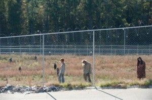 Walking Dead This Sorrowful Life Zombies