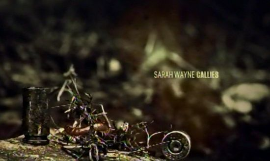 Walking Dead credits Sarah Wayne Callies