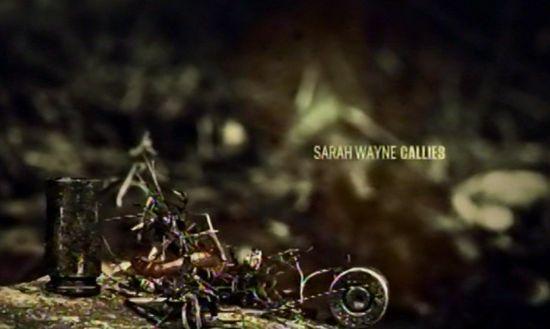 Walking Dead credits Sarah Wayne Callies