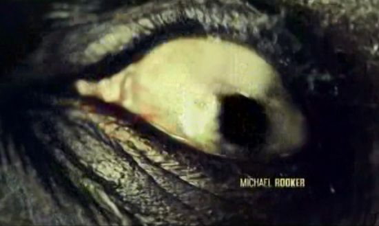 Walking Dead Credits Michael Rooker