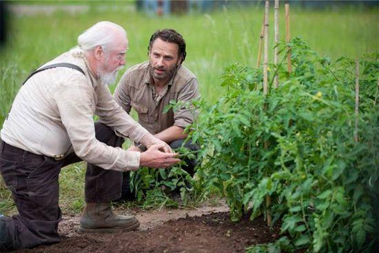 The Walking Dead Season 4 Hershel