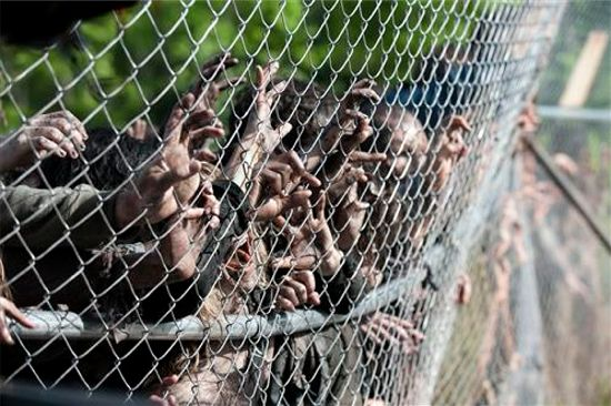 The Walking Dead Infected zombies