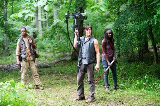 Walking Dead Isolation Daryl, Michonne, Bob Stookey