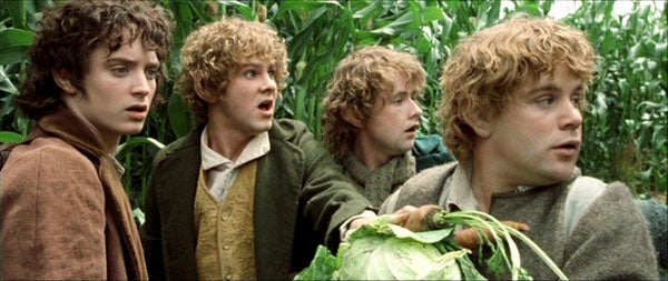 Is The Fellowship Of The Ring A Children S Book