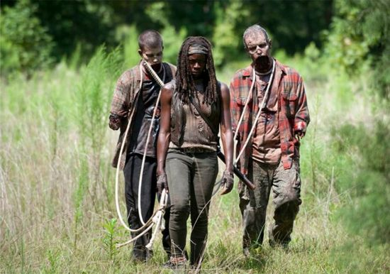 The Walking Dead After Michonne