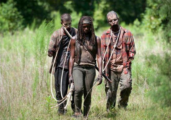 The Walking Dead After Michonne