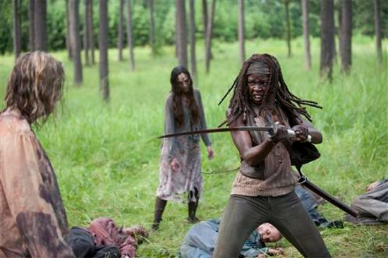 The Walking Dead After Michonne sword