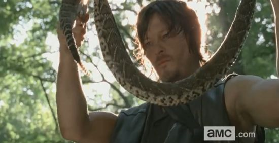 The Walking Dead Daryl Dixon Snake