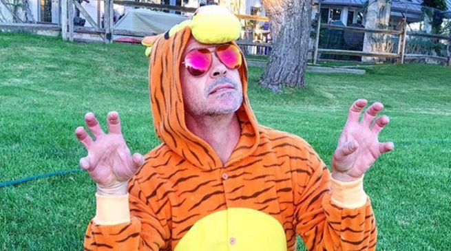 robert-downey-jr-tiger