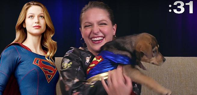 supergirlpuppies